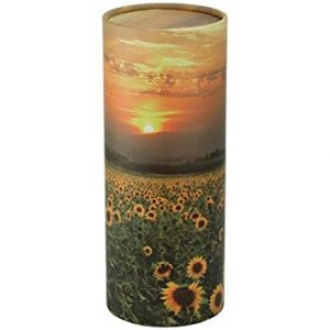 Scatter Tube Sunflower