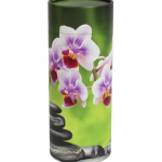 Scatter Tube Orchid