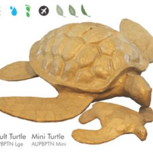 Bio Degradable Turtle