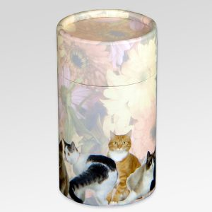Cat Scatter Tube